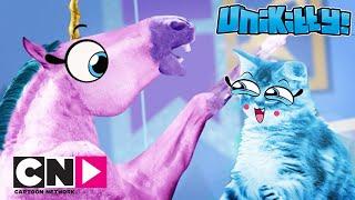 Miracle Kitty | Das langweilige Ende | Cartoon Network
