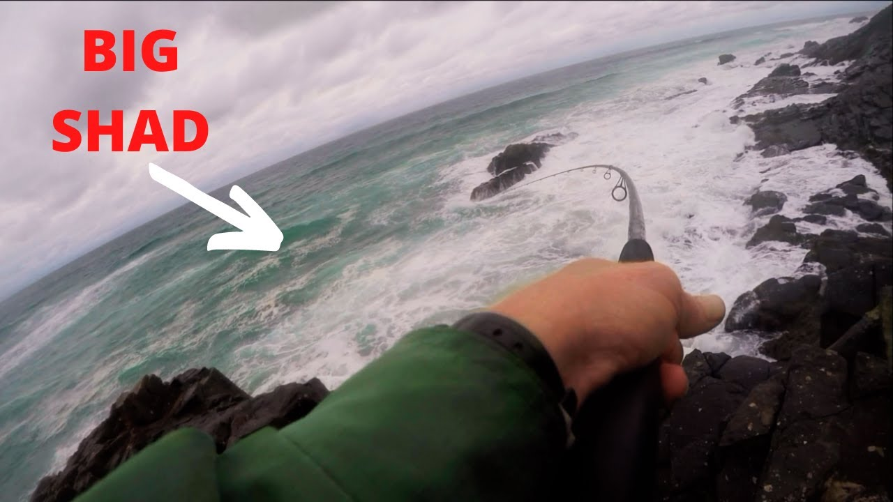 Download Transkei SHAD    South African Fishing Tour Ep 5