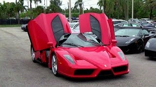Ferrari Enzo in Prestige imports Miami START UP + REVS!!