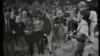the liverbirds - why do you hang around me