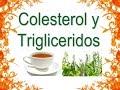 5  Remedios Caseros para el Colesterol y los Triglicéridos