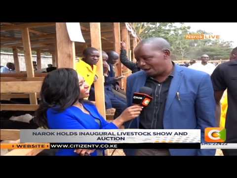 Narok County holds inaugural livestock show and auction