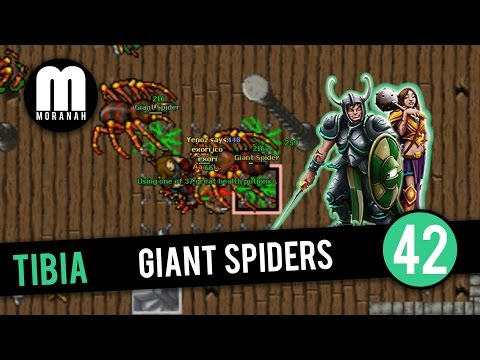 Tibia - #42 - Elite Knight Hunting Giant Spiders