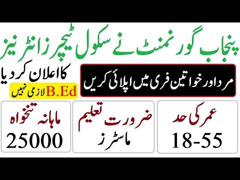 government-jobs-punjab-pakistan|school-teacher-internees-jobs-2019|sti-jobs|november-jobs|educativz