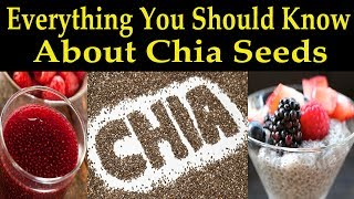 Everything You Should Know About Chia Seeds - Dr. Alan Mandell D.C.