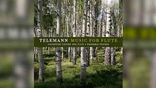 Telemann: Music for Flute (Full Album)