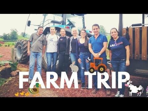 Exploring Field Trips   COSTA RICA