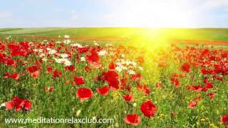Easter Music Playlist, Traditional Easter Songs for Easter Party, Background Music