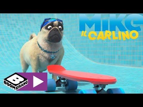 Lo Skateboard | Mike Il Carlino | Boomerang 🇮🇹