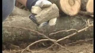 Chipper Safety - Part 1 -  Vermeeer Brush Chipper, Compact Power Center, CPECDirect Thumbnail