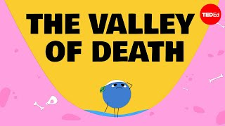 Why good ideas get trapped in the valley of death and how to rescue them