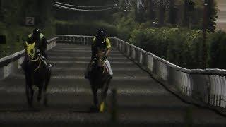 【走れ!バイプレイヤーズ・番外編】今回の「走れ!バイプレイヤーズ」...
