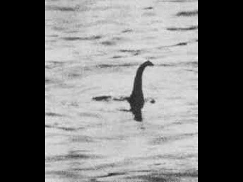 Is The Lake Monster REAL ??