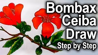How to draw a Bombax Ceiba Flower In 10 Minutes step by step