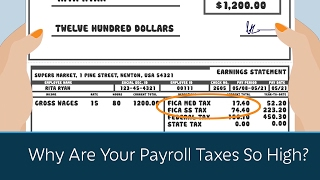 Why Are Your Payroll Taxes So High?