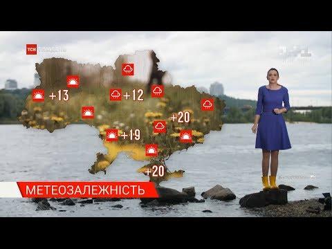 Метеозалежність: якою буде погода в перший тиждень червня
