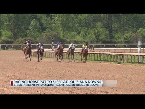 Third Horse Euthanized At Louisiana Downs In Two Months