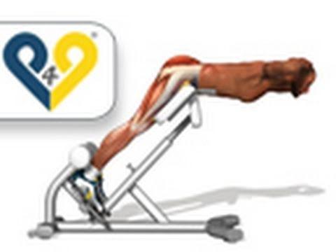 Гиперэкстензия - Упражнение для мышц спины