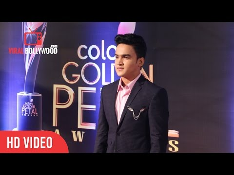 Faisal Khan At Colors Golden Petal Awards 2017 | Viralbollywood