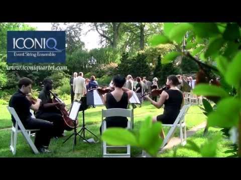 iconiQ Strings - Beautiful Day, U2