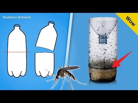 Mira el truco para eliminar los mosquitos con una botella de plástico
