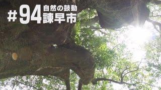 【KTN】長崎フォトリップ #94 自然の鼓動 諫早市