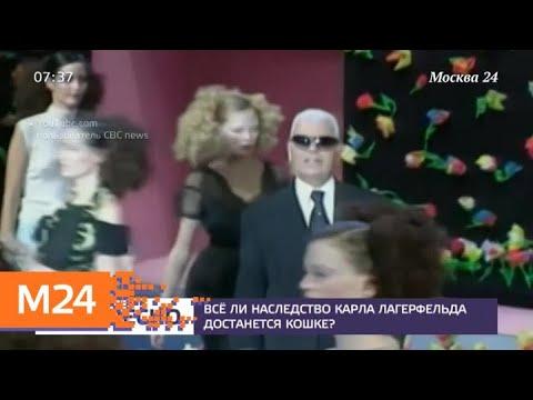 Все ли наследство Карла Лагерфельда достанется кошке - Москва 24