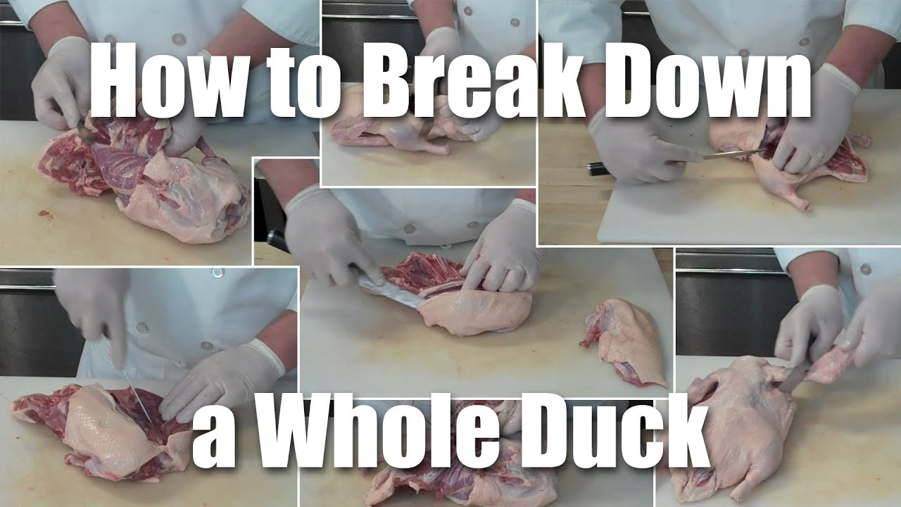 How To Break Down Butcher A Whole Duck Youtube Chicken Meat Cuts Diagram Farm Food Bird Animal Breast And Leg