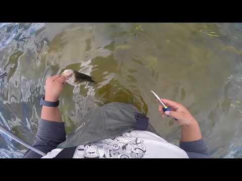 Fishing Ganado Lake August 2017