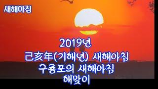 2019년 기해년 새해 연하장