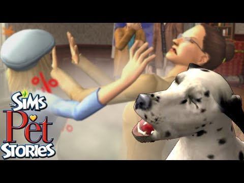 Alice and the Jerks | Pet Stories: Best in Show #1