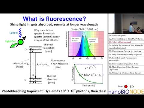 Physics 598 Lecture 2: Fluorescence, Lifetimes and FRET: (Lab 1)