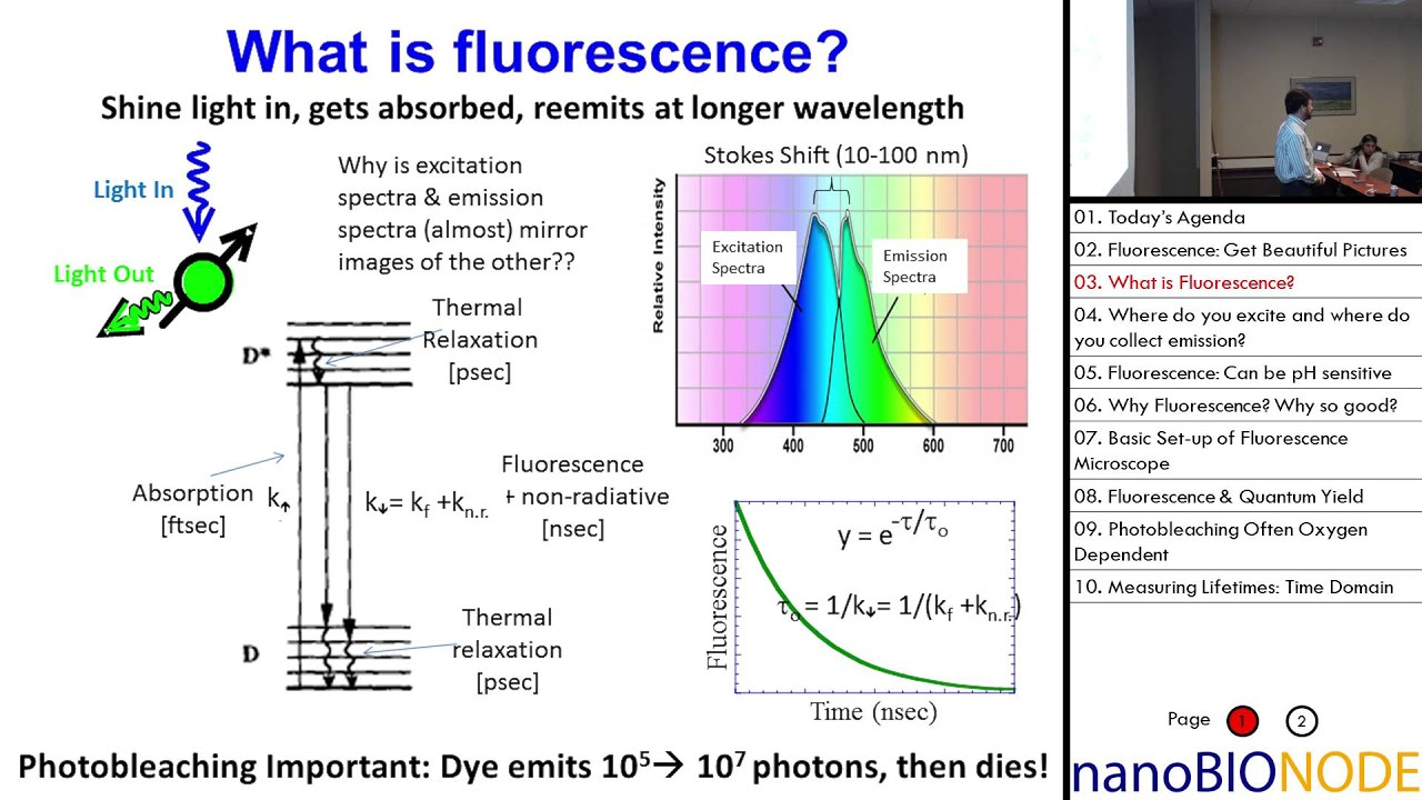 Physics 598 lecture 2 fluorescence lifetimes and fret lab 1 physics 598 lecture 2 fluorescence lifetimes and fret lab 1 ccuart Gallery