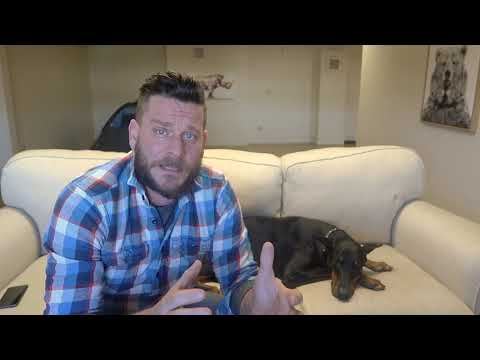 ONE OF THE MOST AGGRESSIVE DOGS!!! (FAKE NEWS) Doberman Review
