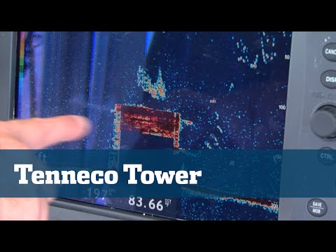 Florida Sport Fishing TV - Tenneco Tower Structure Hollywood Cobia Amberjack