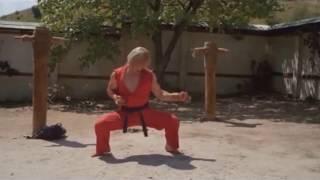 """""""HOOOAAAAABRAKDENBROKAN!"""" - Chun Li Subzero."""