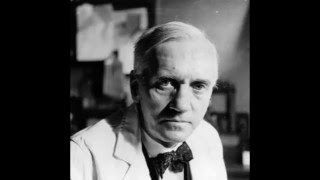 alexander fleming penicillin video