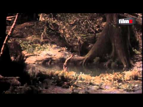 145 Ridley Scott-tema og Prometheus-gallapremiere