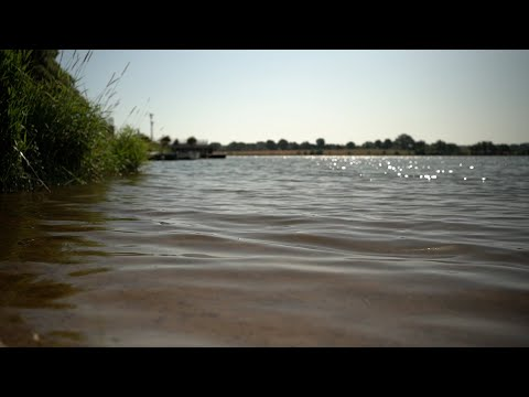 Suivi des cyanobactéries sur les plans d'eau et lacs de l'AdC