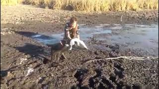 Woman Rescues Bird From Sticky Puddle of Mud - 1190381