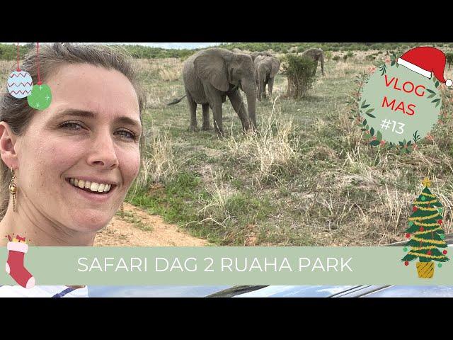 Op Safari Dag 2 | Safari in Ruaha National Park | Tanzania | Vlogmas #13 Selma Kamm