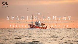 The Spanish Pantry: Anchovies