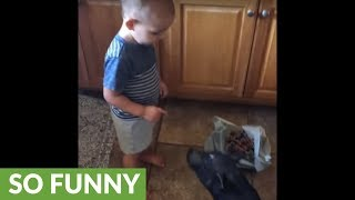 Sneaky mini pig steals little boy's candy