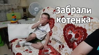 VLOG: Клим привязался к котенку / Выбираем кровать