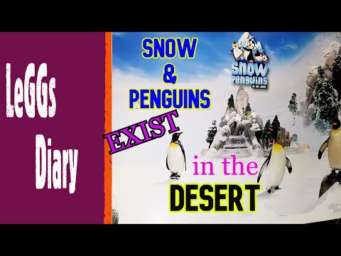 SNOW PARK sa DISYERTO | Encounter with the Penguins at SKI Dubai | Family Adventure