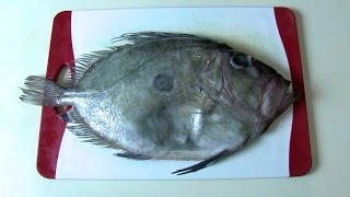 How to fillet a John Dory. Fish filleting. Разделка рыбы. Мастер-класс по разделке Джон Дори.