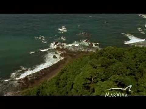 Coiba, paraíso salvaje