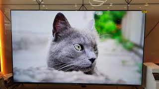 TIVI XIAOMI TV5 PRO 75INCH - ULTRA HD 4K GIẢI MÃ 8K