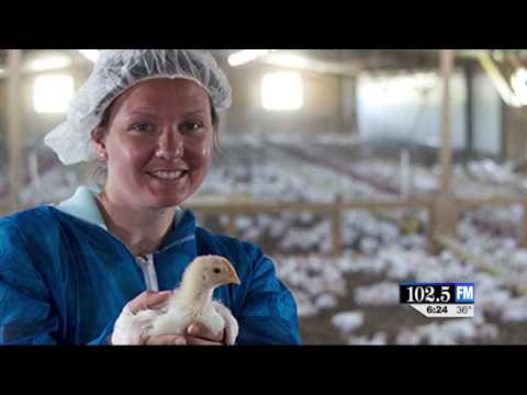 Perdue Farms Continues to Innovate: Getting Birds More Active