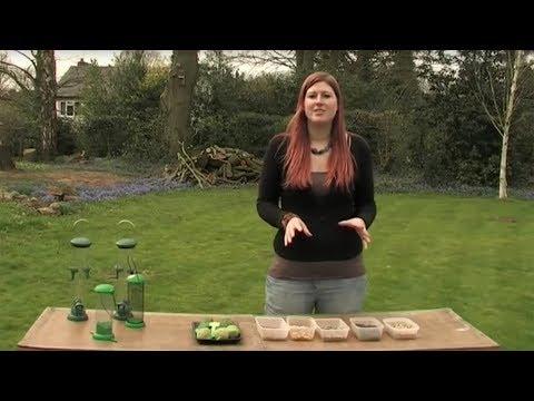 The Wildlife Garden Project - How To Set Up Your Bird Feeders